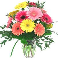 Mix Colour Gerberas Vase Arrangement
