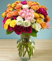 50 Blooms of Assorted Garden Spray Roses