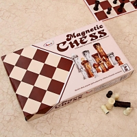 Interesting Annie Magnetic Chess Game